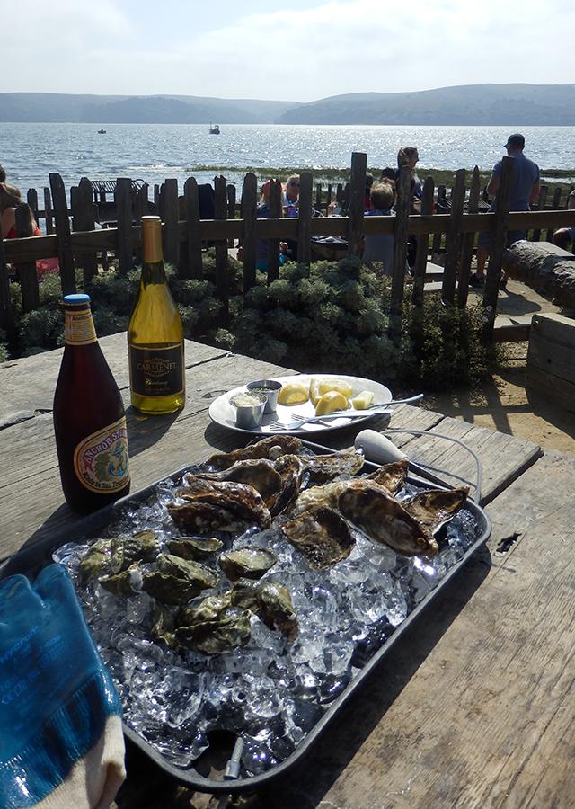 Tomale Bay, Hog Island oysters